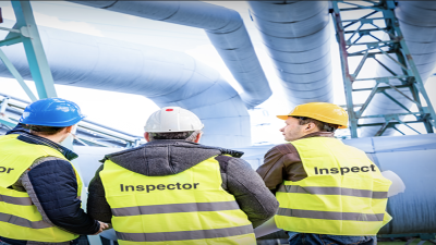 Risk Based Inspection Professional V7.0